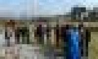 DSCN6682_thumb.JPG